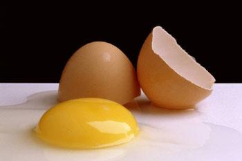 قورباغه ای درون تخم مرغ یا اعتقاد به تناسخ