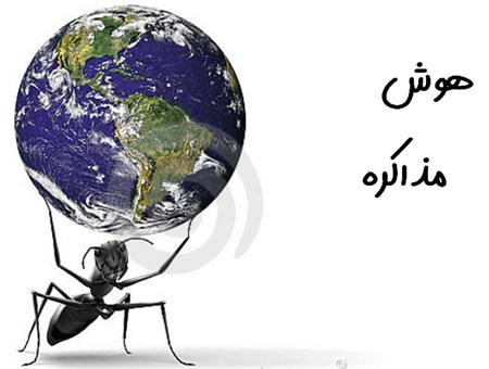 هوش مذاکره محمدرضا شعبانعلی