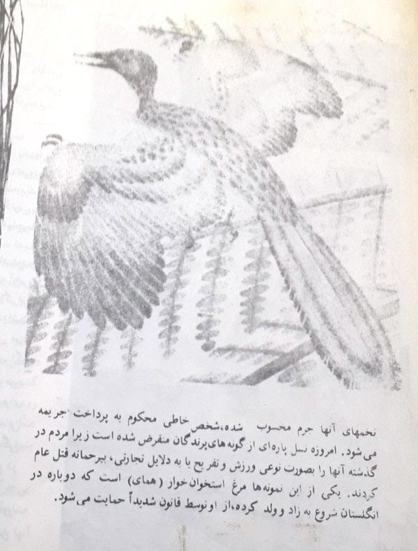 book1-6