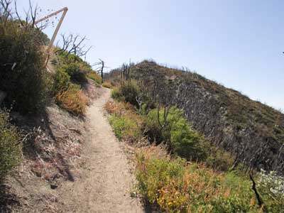 قله ناامیدی Mount Disappointment