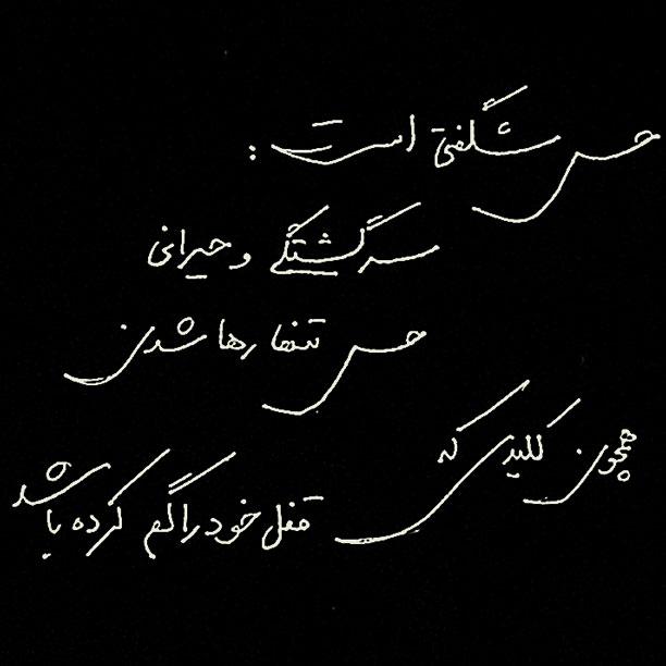 لحظه نگار - محمدرضا شعبانعلی